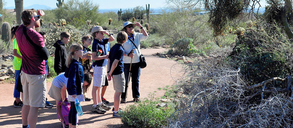family fun at McDowell Sonoran Conservancy